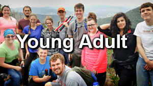 The Bridge-Young Adults