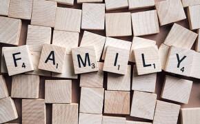Family Mental Health: Surviving Summer